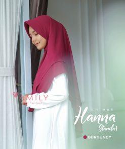 Hanna 16
