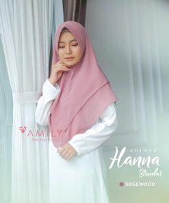 Hanna 21